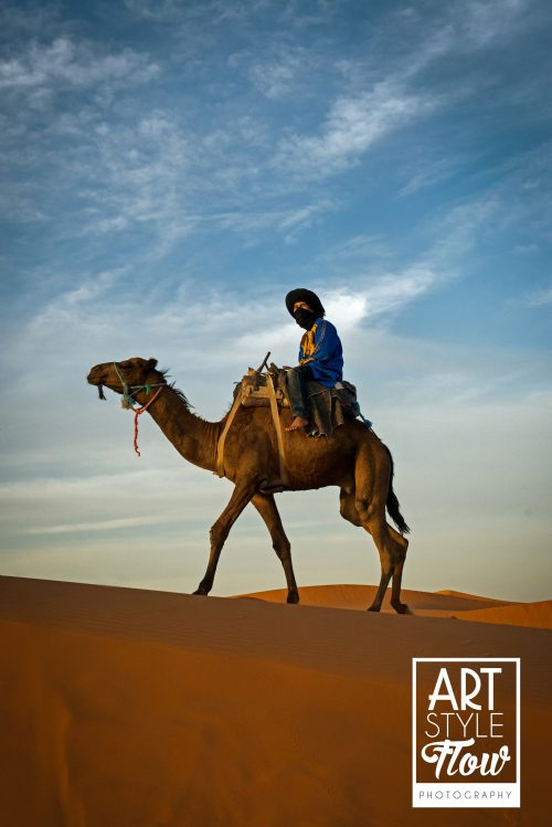 sahara, desert, morocco, camels
