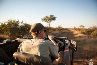 african_safari_photos_madekwi_wildlife_animals_africa_030