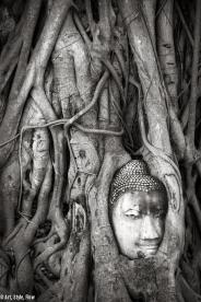 thailand_travel_photos_0050