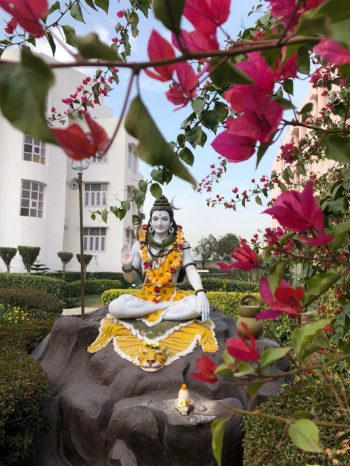 Meditation area outside of The White Lotus
